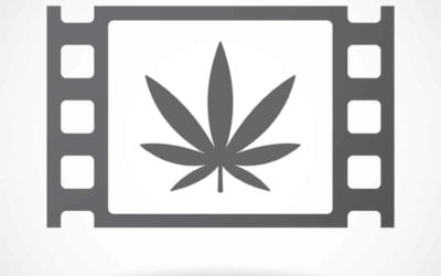 Must-See Stoner Movies: Five Great Options