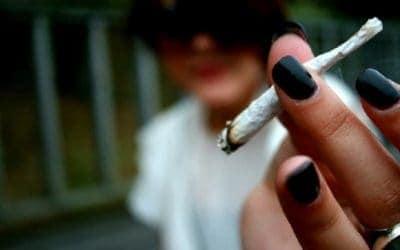 Top Reasons to Smoke Pot