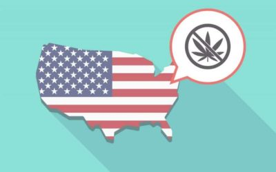 The Real Reason The Cannabis Ban Took Place