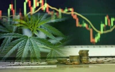 Top Industries Impacted By Marijuana Legalization
