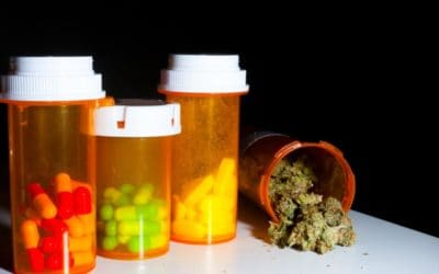 Top Legal Substance Use Worse Than Cannabis Use