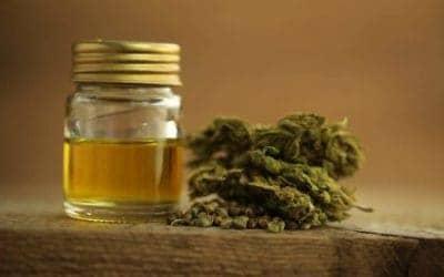 Top Ranked CBD Oils