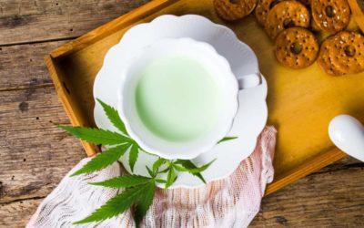Top Reasons To Choose A Marijuana Bud and Breakfast
