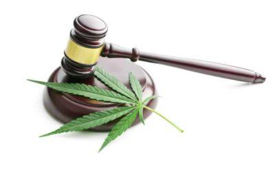 Top Things Every Marijuana Legislation Must Have
