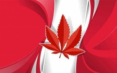 Top Three Canadian Marijuana Companies