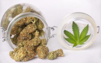3 Tips to Find the Best Marijuana Dispensary Near You