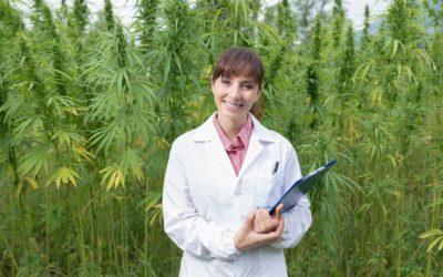 Top Rated Pot Docs in California