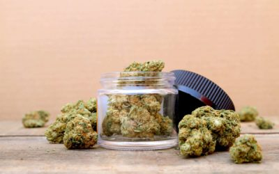 Top 5 Recreational Cannabis Pros And Cons