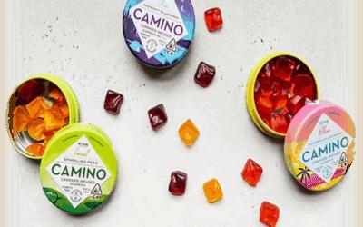 7 Secrets About CBD Gummies Revealed