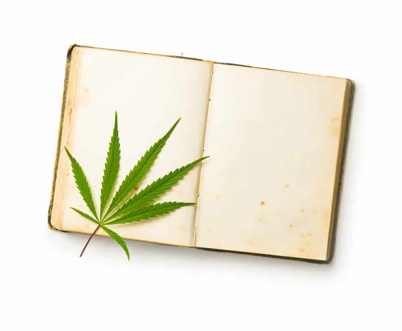 marijuana leaf on a book, top cannabis books