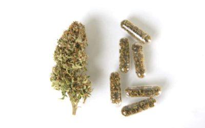 Utah Opens Its First Medical Marijuana Dispensary