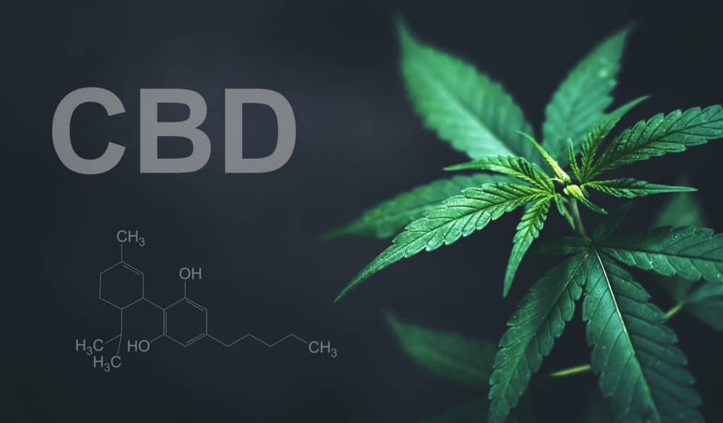 what is CBD isolate 1024x600 1